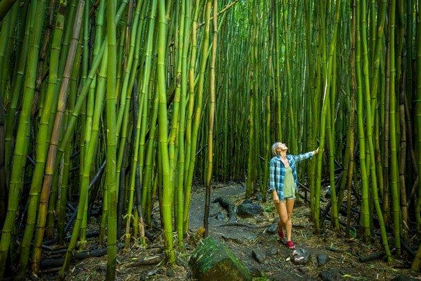 Travel Nursing Jobs Hawaii